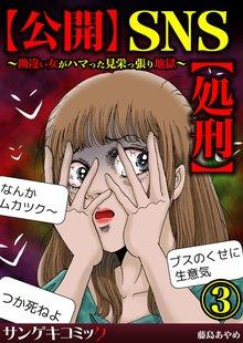 【公開】SNS【処刑】~勘違い女がハマった見栄っ張り地獄~ :3