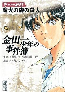 金田一少年の事件簿 File(20)