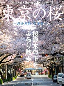 Tokyo Cherry Blossom 東京の桜 ~新井薬師・哲学堂~