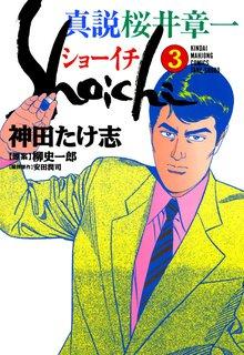 真説 桜井章一 ショーイチ (3)
