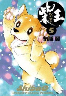 柴王(5)