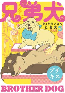 兄弟犬 プチキス(5)