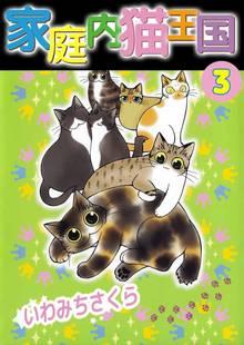 家庭内猫王国(3)