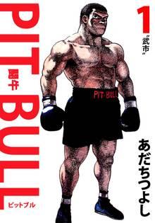 PIT BULL-闘牛-