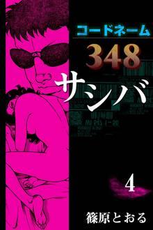 コードネーム348 サシバ (4)