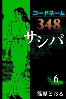 コードネーム348 サシバ (6)