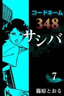 コードネーム348 サシバ (7)