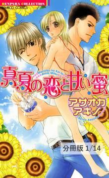 真夏の恋と甘い蜜【分冊版】