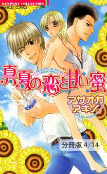 真夏の迷路 2 真夏の恋と甘い蜜【分冊版4/14】