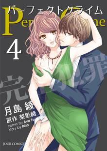 Perfect Crime 4
