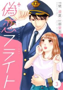 comic Berry's偽恋フライト3巻